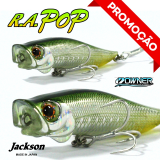 JACKSON R. A. POP 7CM / 7GR SSS